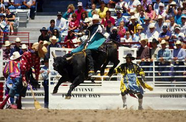 Rodeo, Cheyenne, Wyoming